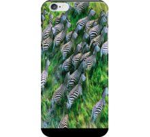 Zebra Phone Case iPhone Case/Skin