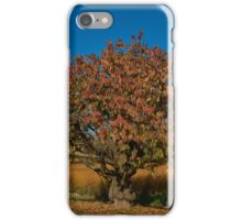 Gnarled fruit tree iPhone Case/Skin