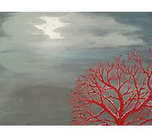 Red Tree in Moonlight Photographic Print