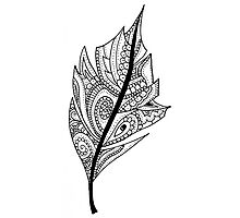 Zentangle Feather Balck and White Design Photographic Print