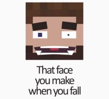 When you fall - Minecraft Meme by grimradke