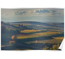 View across the Kaiserstuhl in Autumn Poster