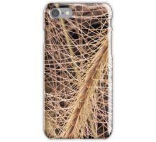Fox Tail Grass Macro iPhone Case/Skin