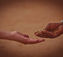 Hand giving rice to another hand by Anna Alferova