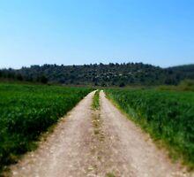 My Way by Orel