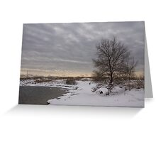 Pearly Grays and Ripples on the Winter Beach Greeting Card