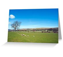 Wensleydale, Yorkshire Dales Greeting Card