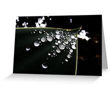 Water Drops Greeting Card