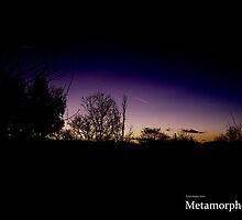 Nighttime Shooting Star by MetamorphosisRS