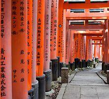 Kyoto Torii gates by photoeverywhere