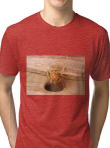 Golden Carpenter Bee Tri-blend T-Shirt