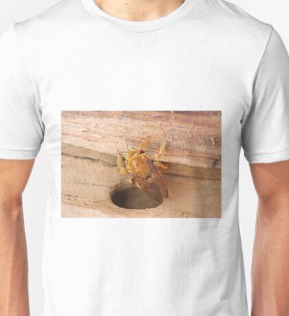 Golden Carpenter Bee Unisex T-Shirt