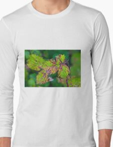 Blackberry Leaf Abstract Long Sleeve T-Shirt
