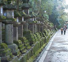 Kasuga Taisha Temples by photoeverywhere