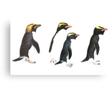 Penguin Group Canvas Print
