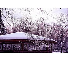 In a Winter Park Photographic Print