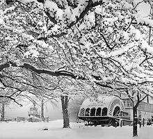 winter bliss (bw) by John Poon