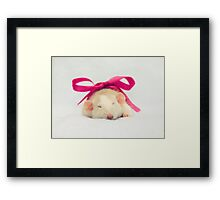 Worm in a bow Framed Print