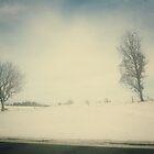 Winter by Vesna *
