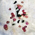 Rosepetal Runes by RC deWinter