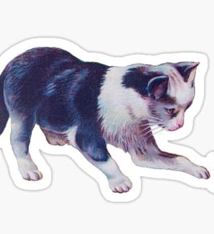 Cat Playing With A Butterfly Sticker