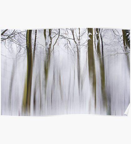 Wintle landscape Poster
