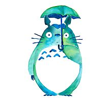 Water color Totoro Photographic Print