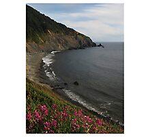 Humbug Mountain, Oregon Photographic Print