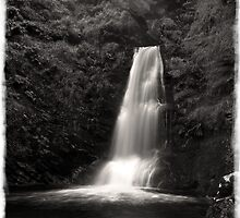 Pistyll Rhaeadr Waterfall in Mono by DavidWHughes