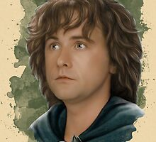 Pippin of the Fellowship by Art-by-Aelia