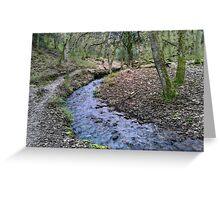 Holford Wood #1 Greeting Card
