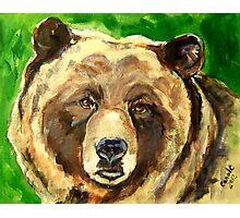 Bear Against Green Photographic Print