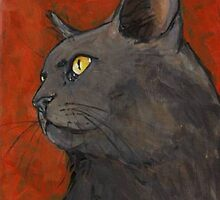 Gray cat by Carole Chapla