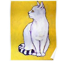 White Cat with Tabby Tail Poster