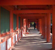 Kasuga-taisha by photoeverywhere