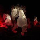 The Fiers a cheval  Canberra Enlighten  2014 by Kym Bradley