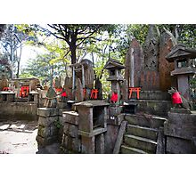 kitsune temple altars Photographic Print