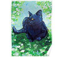 Black Cat Impressionism Poster