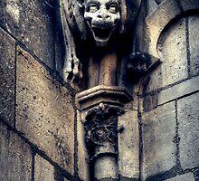 Notre Dame Gargoyle by ramiromarquez