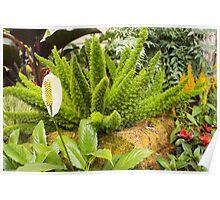 Panagbenga 2014 landscaping plant Poster