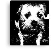 Cowboy dog Canvas Print