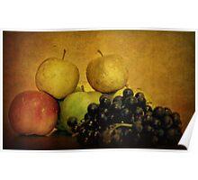 Autumn Fruits Poster