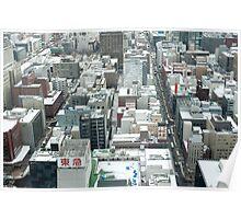 Sapporo in Winter Poster