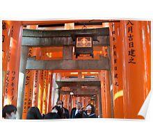 red torii gates Poster