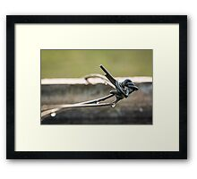 Wire Drops Framed Print