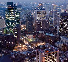 Tokyo Cityscape at Night by photoeverywhere