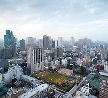 urban tokyo by photoeverywhere