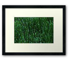 Irish Green Water Droplets Framed Print