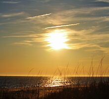 Sun About To Set by Cynthia48