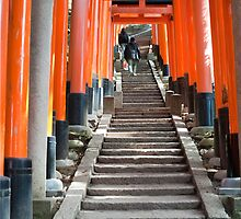torii gates and steps by photoeverywhere